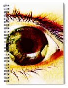 The Soul Spiral Notebook