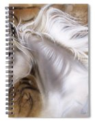 The Source II Spiral Notebook