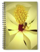 The Southern Magnolia Spiral Notebook