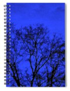 The Sparkle Tree Spiral Notebook