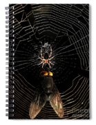 The Spider  And The Fly Spiral Notebook