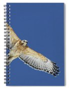 The Spirit Of The Hawk Spiral Notebook