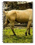 The Spring Fling Spiral Notebook