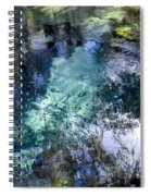 The Springs Spiral Notebook