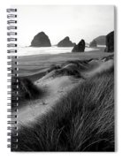 The Stacks Bw Spiral Notebook
