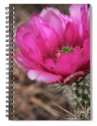 The Stigma Of Beauty II Spiral Notebook