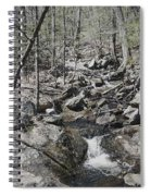 The Stoney Way Spiral Notebook