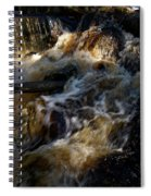 The Stream 1 Spiral Notebook