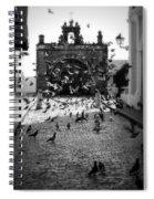 The Street Pigeons Spiral Notebook