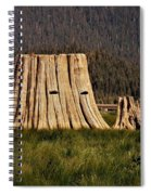 The Stumps Have Eyes Spiral Notebook
