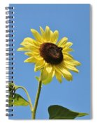 The Sun In The Sky Spiral Notebook