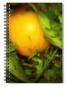 The Sun Is Sleeping In The Garden Spiral Notebook