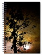 The Sunset Tree Spiral Notebook