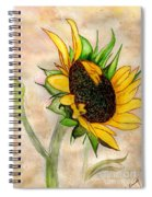 The Sunshine Of God's Love Spiral Notebook