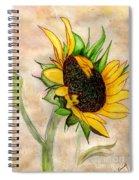 The Sunshine Of God's Love Spiral Notebook