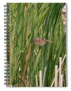 The Swamp Sparrow In-flight Spiral Notebook
