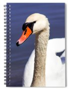 The Swan Spiral Notebook