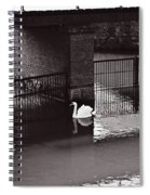 The Swan Story Spiral Notebook