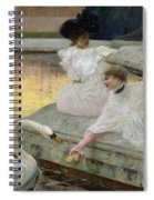 The Swans Spiral Notebook