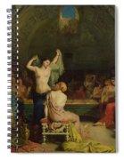 The Tepidarium Spiral Notebook
