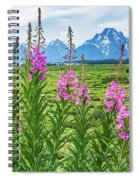 The Tetons Are Grand Spiral Notebook
