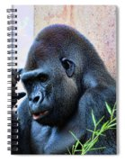 The Thinking Gorilla Spiral Notebook