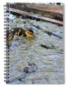 The Three Amigos Ducklings Spiral Notebook