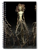 The Three Graces Dance Spiral Notebook