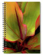 The Ti Leaf Plant In Hawaii Spiral Notebook