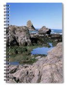 The Tidepools Of Bear Harbor Spiral Notebook