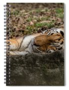 The Tiger's Rock  Spiral Notebook