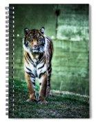 The Tigress Spiral Notebook