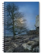 The Tree Of Inis Mor Spiral Notebook