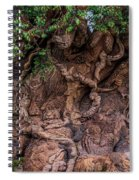 The Tree Of Life Close Spiral Notebook