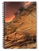 The Tree Of Zion Spiral Notebook