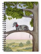 The Tree Whippet Spiral Notebook