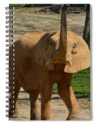 The Trumpeter Sounds Spiral Notebook