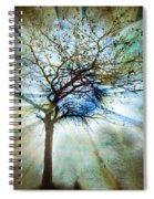 The Truth Of Trees Spiral Notebook