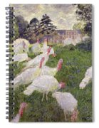 The Turkeys At The Chateau De Rottembourg Spiral Notebook
