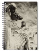 The Ugly Duckling Spiral Notebook