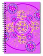 The Universal Spin Of Violet Spiral Notebook