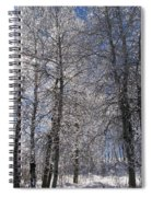 The Warmth Of The Sun Spiral Notebook