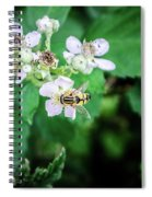 The Wasp Spiral Notebook