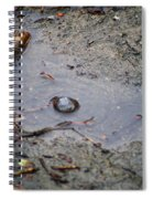 The Water Bubble Spiral Notebook