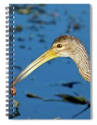 The Water's Edge Seafood Cafe Spiral Notebook