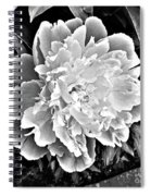 The White One Spiral Notebook