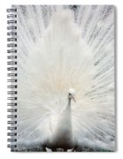 The White Peacock Spiral Notebook