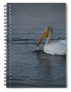The White Pelican 1 Spiral Notebook