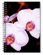 The White Twins Spiral Notebook