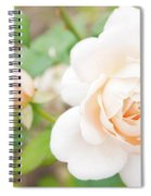 The White Washed Rose Spiral Notebook